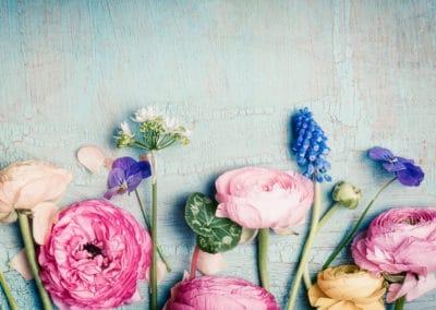 Lovely flowers retro pastel toned  on vintage turquoise background
